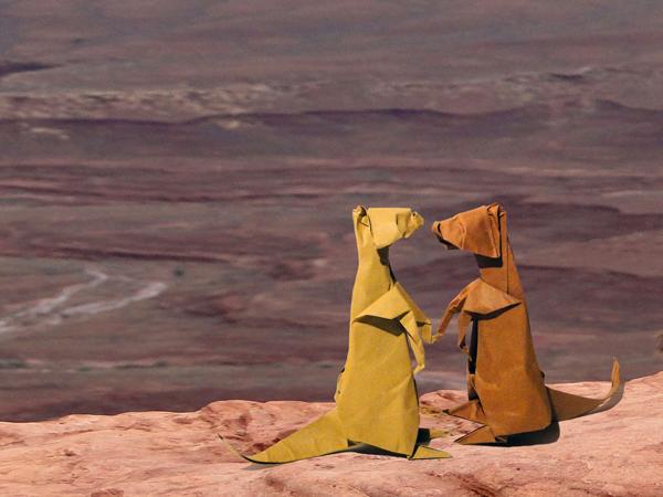 Stokstaartje Suricate, design Albertino, folding, photo Danielle Verbeeten