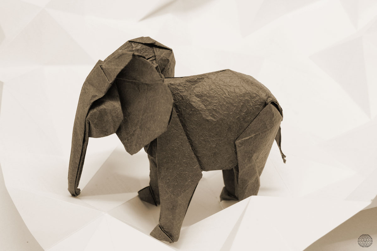 origami Elephant design S Mabona folded by Danielle